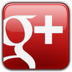 Visit Roof Medic on Google Plus